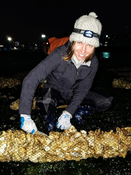 Oyster seeding at night