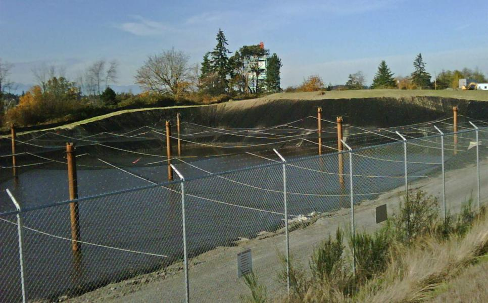 pond with netting