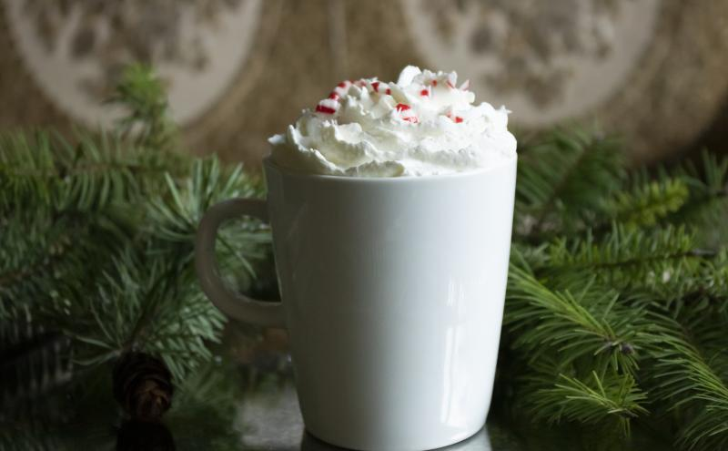 Coffee in a cup with whipped cream and boughs of holiday greenery