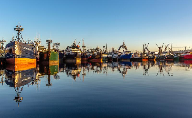 Fishing vessels and blue sky are reflected in perfectly smooth water at Fishermen's Terminal, Port of Seattle, Oct. 2018.