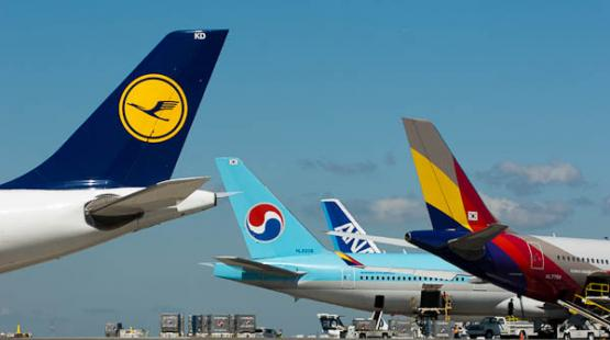 Airlines and Destinations | Port of Seattle